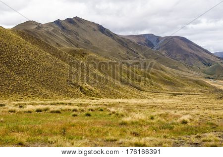 Tussocks and yellow rolling hills near Lindis Pass in Central Otago on the South Island of New Zealand