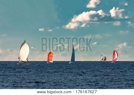 Sailboat regatta at summer in open Baltic sea