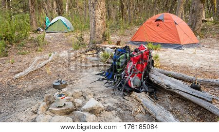 Two tents in a wild campsite in a forest / Camping gear
