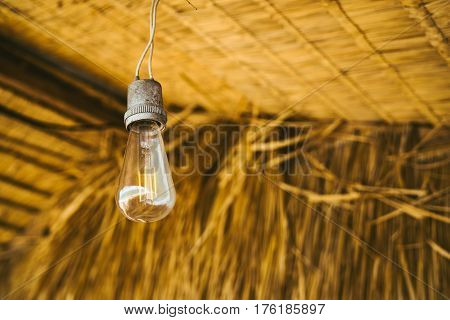 Lamps incandescent on the background of bamboo leaves of the roof of the house. Lamp of Edison.