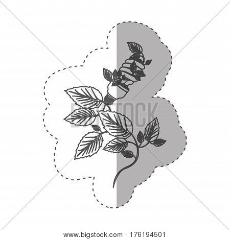 sticker with grayscale contour with spiral fluorescent bulb and creeper plant vector illustration