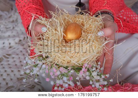 Female hands holding a chicken egg nest with egg