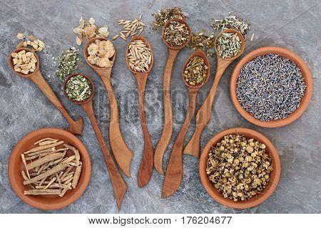 Herbs to heal anxiety and sleeping disorders using alternative herbal medicine in wooden spoons and terracotta bowls.