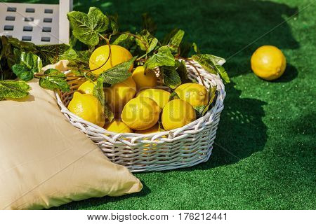 Bright composition of lemons in basket and near it, standing on green lawn