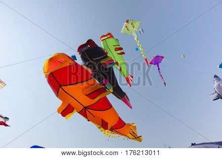 Various colorful kites flying in blue sky. Stingrays, Koi fish.