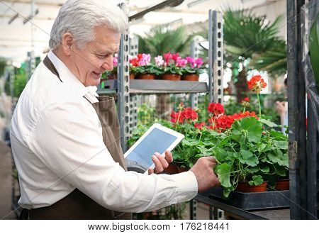 Male florist with tablet at greenhouse