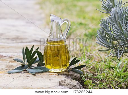 Bottle of olive oil with branch outdoor shoot