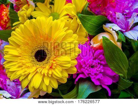 gerbera. bouquet of flowers. bouquet of flowers roses gerbera flowers carnations