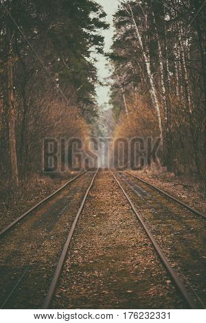 Tram rails in the autumn forest, vintage hipster background. Travel, freedom and hope concept.