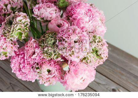 pink persian buttercup flowers. Curly peny ranunculus in green vintage can, copy space