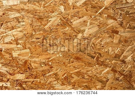OSB wood particles in the yellow shade