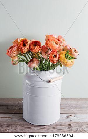 Orange and yellow persian buttercup flowers. Curly peny ranunculus in gray vintage can, copy space.