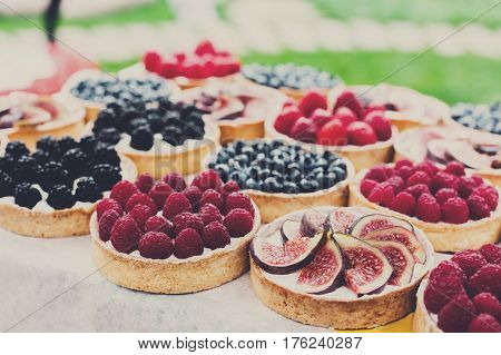 Fruit and berry tarts dessert tray assorted outdoors. Closeup of beautiful delicious pastry sweets with fresh natural raspberries and figs. French Bakery catering. Filtered, shallow depth of field