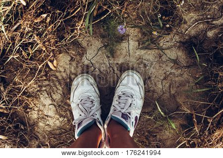Sneakers On Ground, Woman Taking A Walk In The Summer Meadow In Summer. Top View At Legs And Shoes O