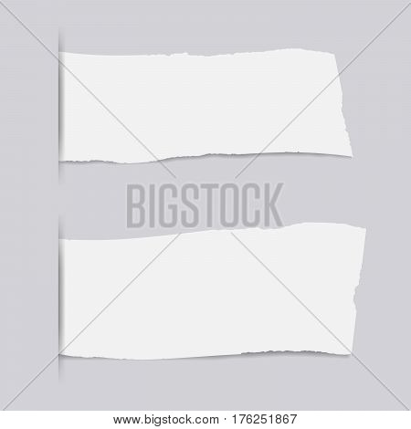 Pieces of torn white copybook strips inserted into cut paper.