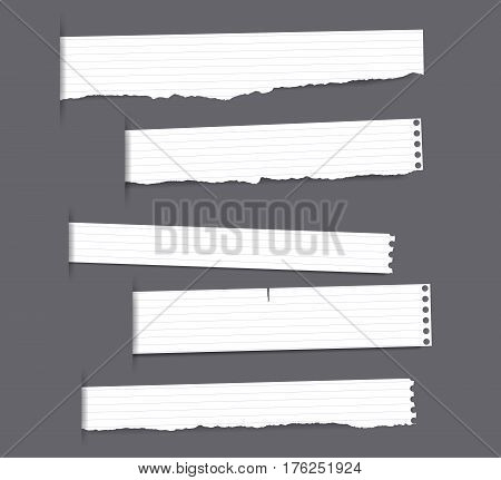 Pieces of torn white ruled copybook strips inserted into cut paper.