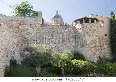 Salamanca (Castilla y Leon Spain): facade of historic buildings along the medieval walls