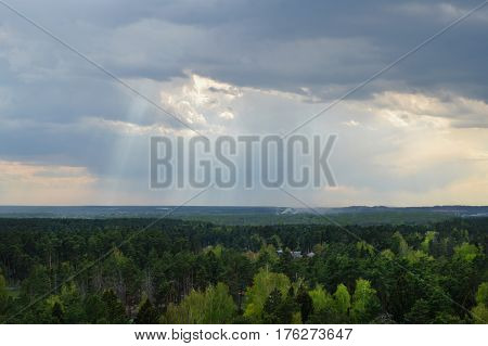 View of the spring forest green and cloudy sky with glimpses of sun.