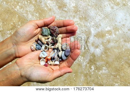 Travel to island Koh Larn Thailand. Two hands with a different seashells and stones on the sea beach background in the sunny summer weather.
