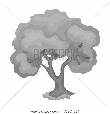 An old tree with a large green crown.Farm and gardening single icon in monochrome style vector symbol stock web illustration.