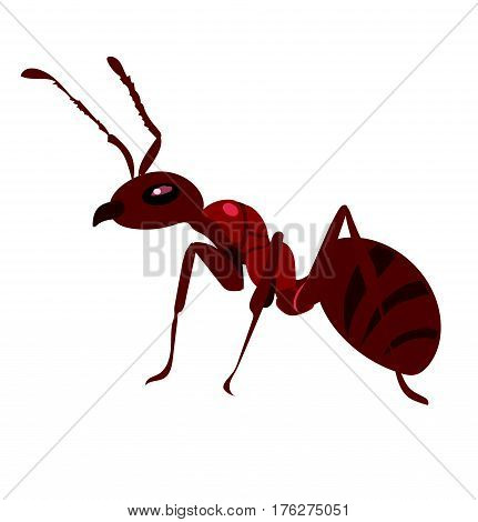 Fire ant is ready to work and fight