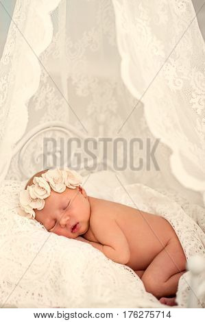 Ideas for newborn photo shoot. Newborn girl sleeping on the tummy to decorative crib. Portrait of a sleeping newborn girl with floral bandage on his head covered with delicate tippet