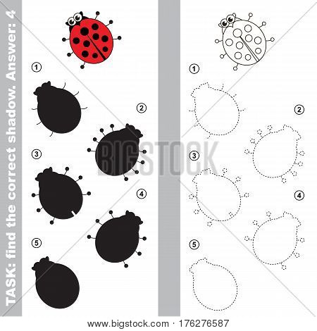 Ladybug with different shadows to find the correct one. Compare and connect object with it true shadow. Easy educational kid gaming. Simple level of difficulty. Visual game for children.
