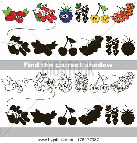 Set of cute berries. with shadows to find the correct one. Compare and connect objects and their true shadows. Easy educational kid gaming. Simple level of difficulty. Logic game for children.