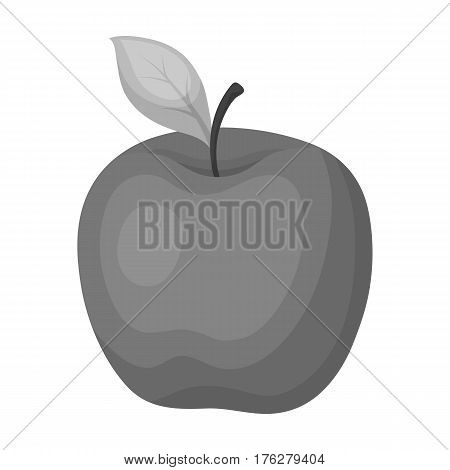 Red Apple. Snack at school. Lunch at the break.School And Education single icon in monochrome style vector symbol stock web illustration.