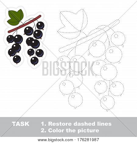 Blackcurrant in vector to be traced. Easy educational kid game. Simple level of difficulty. Restore dashed line and color the picture. Trace game for children.