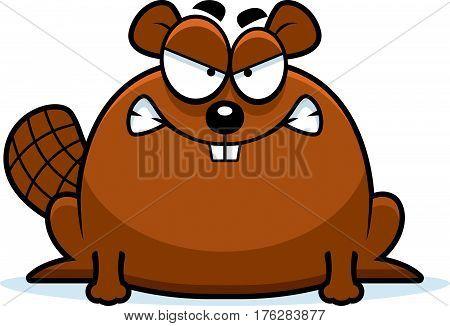 Mad Little Beaver
