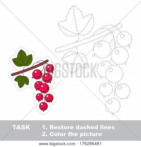 Red currant in vector to be traced. Easy educational kid game. Simple level of difficulty. Restore dashed line and color the picture. Trace game for children.