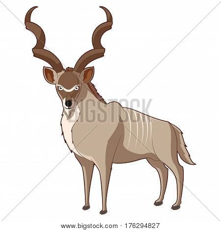 Vector image of the Cartoon smiling Kudu
