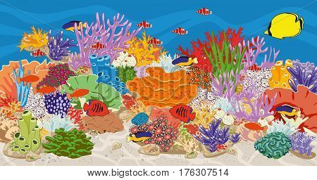 Marine reef saltwater aquarium with fish and corals. Coral reef in ocean. Vector illustration