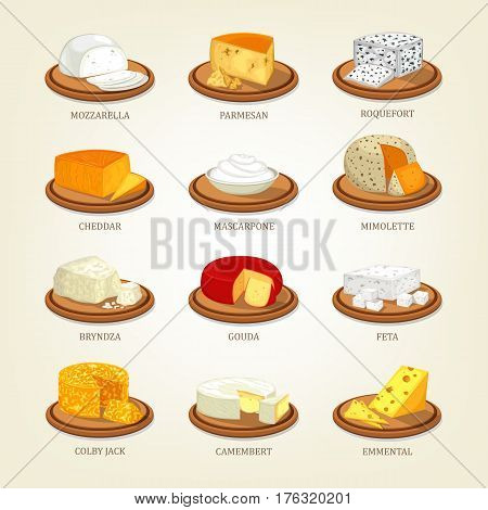 Mozzarella cheese and parmesan or parmesan-reggiano food, roquefort and cheddar, mascarpone and mimolette, gouda and feta, bryndza and colby jack, camembert and emmental. Nutrition set of icons