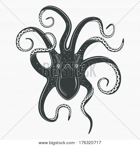 Upside down view on octopoda or octopus with curvy tentacles and suction cups on it. Spineless ocean or sea mollusk, marine cuttlefish. Underwater life tattoo and mascot, zoology predator theme