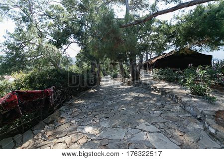 Stone paved walking path among pines in nomads park in Kemer Antalya with wooden fance covered with carpet on left side of image and nomad tents on right side.