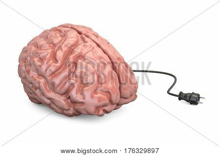 Brain and power plug thinking concept. 3D illustration