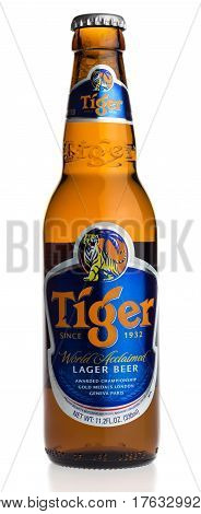 GRONINGEN, NETHERLANDS - MARCH 14, 2017: Bottle of Singaporese Tiger beer isolated on a white background