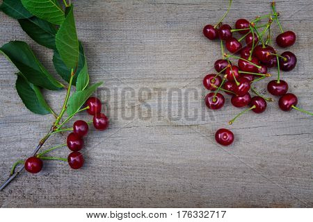 Branch of ripe cherries on the old wooden board