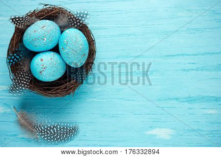 Easter eggs in nest turquoise Easter background