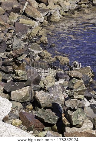 Vertical close up of large rocks on the shore of the Halifax Harbor on a bright sunny day in September in Halifax Nova Scotia.