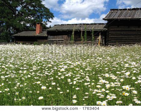 Skansen_Farmstead6