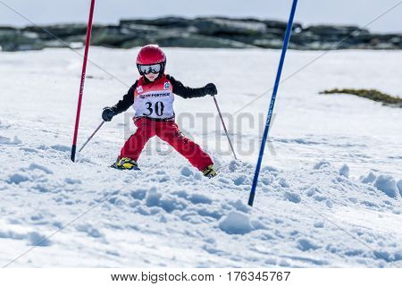 Mateus Tavares During The Ski National Championships