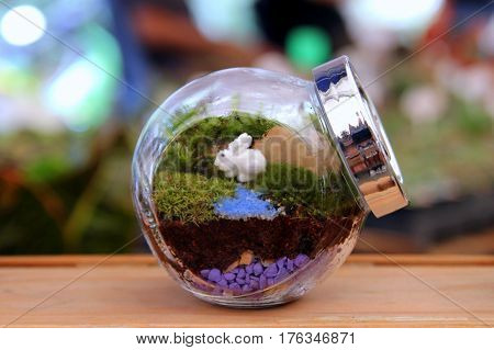 Travel to Bangkok, Thailand. The small terrarium in a glass jar on the market.