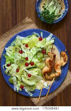 Fresh salad of gooseberry red currant cucumber and iceberg lettuce with baked chicken breast stripes on skewer photographed overhead on dark wood with natural light