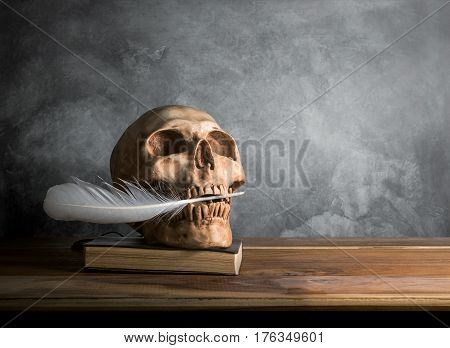 Skull hold plume in the mouth on wooden table with cement wall background.