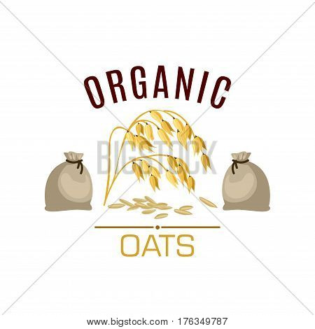 Oats vector icon. Cereal seed grass plant of oats ear with leaves and flour or grain sacks. Design for diet nutrition food, oaten porridge or oatmeal ingredient for grocery store, market or package