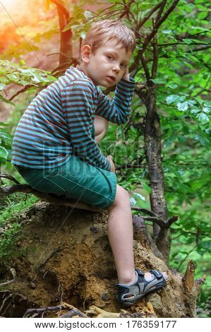 Small boy in striped sweater and shorts in summer forest park in sunlight