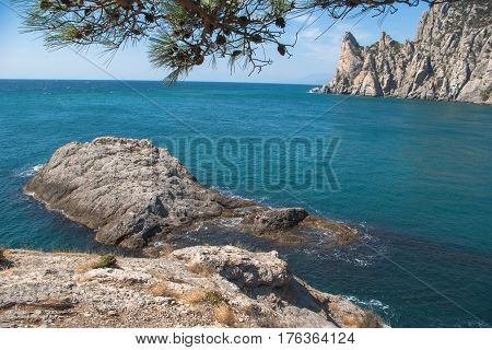 View of the Bay, cliffs and the blue sea. Rocky Cove with spruce branches in foreground, drowned in the water rocks and mountains in the background.